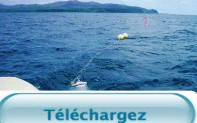 Télécharger : la restitution finale des travaux de recherche du projet ADIIP du 11/09/2015 à l'IRD