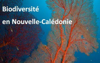 La Stratégie Nationale pour la Biodiversité outre-mer en Nouvelle-Calédonie – 2011