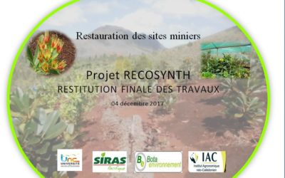 Télécharger la Restitution finale des travaux du Projet RECOSYNTH le 04/12/17