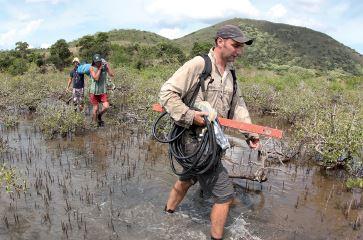 PRESSE : La mangrove calédonienne au cœur des recherches scientifiques – [Article NC Nickel n°8- sept 2014]