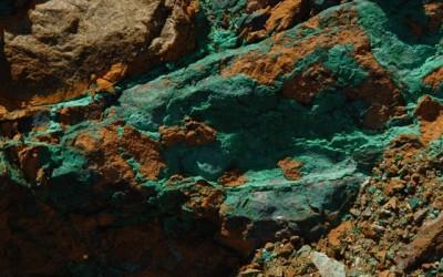 APPEL A PROJETS 2015 CLOTURE  : ADN environnemental en Nouvelle-Calédonie
