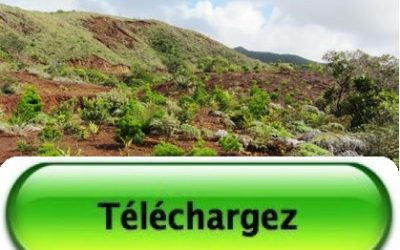 Télécharger la Présentation des travaux d'avancement des projets RECOSYNTH ET BIOINDIC – Le 18/12/15