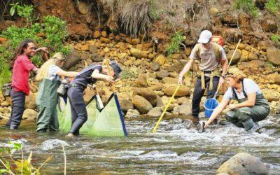 Presse : Coup de pêche électrique et scientifique en eau douce – Art. LNC du 21/03/2017