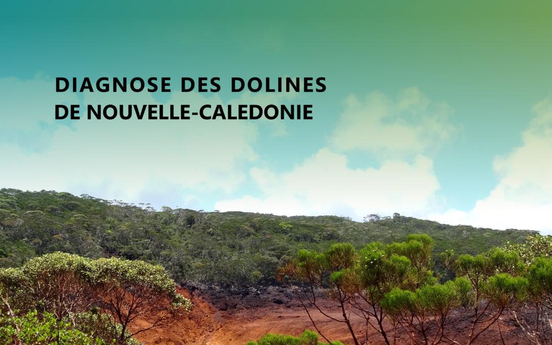Télécharger : Rapport final des travaux scientifiques du projet DIAGNOSE DES DOLINES DE NC [juill. 2018]