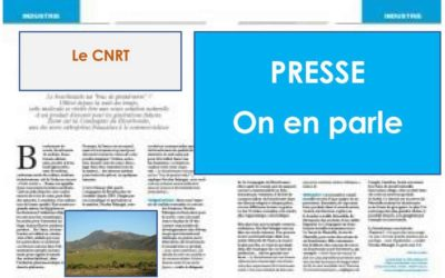 Presse : Cyril Marchand, profession chercheur [Article MINES magasine 2012]