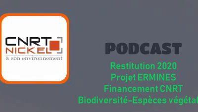 ECOUTER le podcast de la restitution des travaux de recherche année 1 du projet ERMINES «Espèces végétales rares et menacées des sites miniers» du 30/08/20