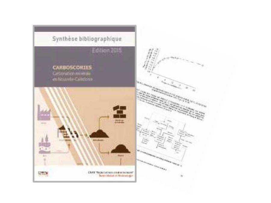 Synthèse bibliographique liée au programme CARBOSCORIES – Edition2015