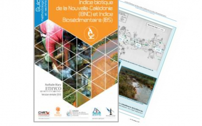 Rapport scientifique lié au Projet «IBNC-IBS, Amélioration des méthodes indicielles: Indice Biotique de la Nouvelle-Calédonie (IBNC) et indice Biosédimentaire (IBS)» est une mise à jour de deux indices existants et utilisés en Nouvelle-Calédonie pour les suivis de la qualité des eaux des rivières – Edition 2016