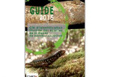 Guide sur les clés d'identification illustrée des écailles de scinques de Nouvelle-Calédonie, lié au Projet RMINE : Impact des espèces invasives du les reptiles des massifs miniers – Edition 2015